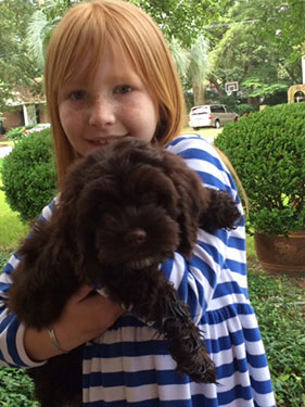 Red Headed Girl Holding Fluffy Puppy
