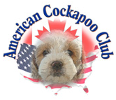 American Cockapoo Club